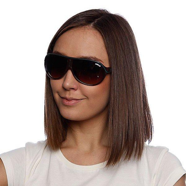Очки женские Animal Layback Girls Brown Proskater.ru 1439.000