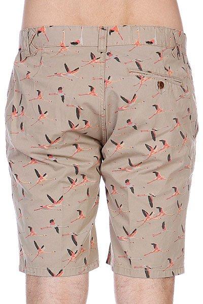 Шорты K1X Flamingo Chino Shorts Latte Proskater.ru 3390.000