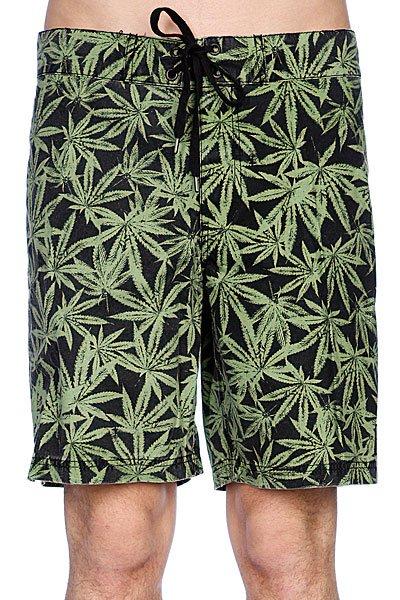 Пляжные мужские шорты Fallen Board Short Green LeafСтрана производитель:США<br><br>Цвет: черный,зеленый<br>Тип: Шорты пляжные<br>Возраст: Взрослый<br>Пол: Мужской