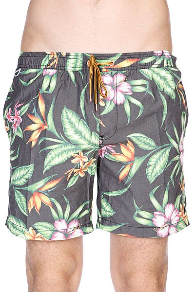 цены Шорты пляжные Globe Havana Pool Short Multi Coloured