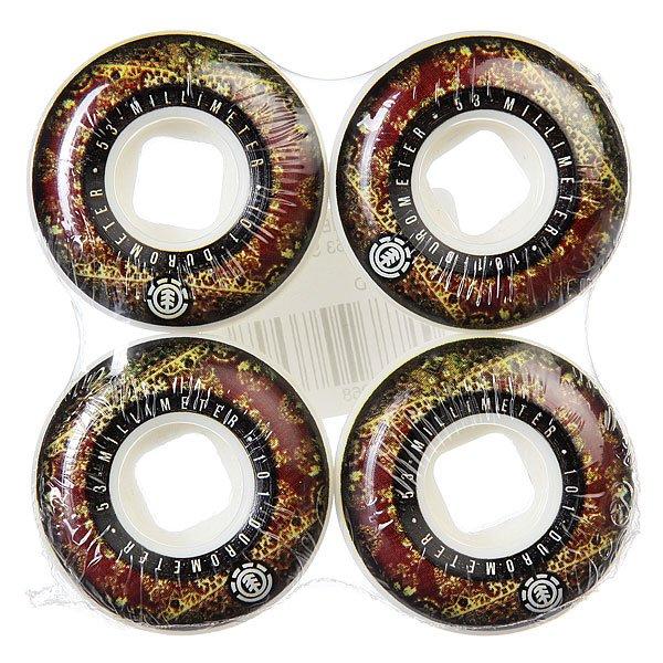 Колеса для скейтборда для скейтборда Element Nightcap 101A 53 mm