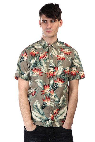 Рубашка Huf Birds Of Paradise S/S Woven Olive<br><br>Цвет: зеленый<br>Тип: Рубашка<br>Возраст: Взрослый<br>Пол: Мужской