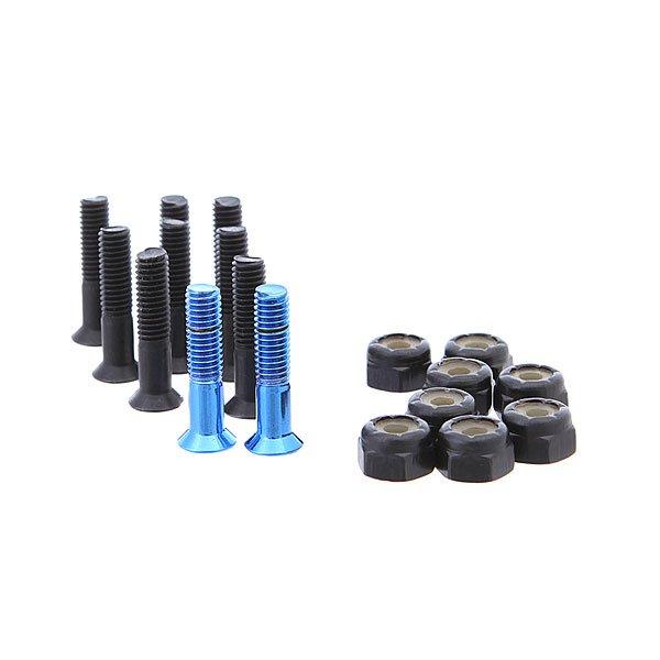 Винты для скейтборда Thunder Th Black/Blue Phillips 7/8Размер: 7.8    Тип винтов: для крестовидной отвертки    Цена указана за 1 комплект из 10 болтов, 8 гаек<br><br>Цвет: черный,голубой<br>Тип: Винты для скейтборда