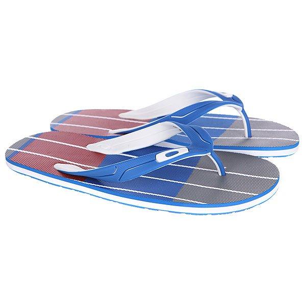 Шлепанцы Oakley Standard Blue<br><br>Цвет: серый,голубой,красный<br>Тип: Вьетнамки<br>Возраст: Взрослый<br>Пол: Мужской