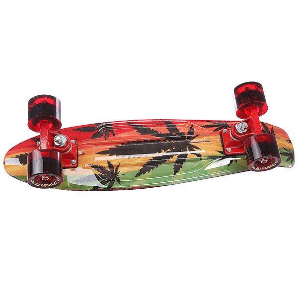 Скейт мини круизер Turbo-FB Rasta Red/Green 22 (55.9 см)