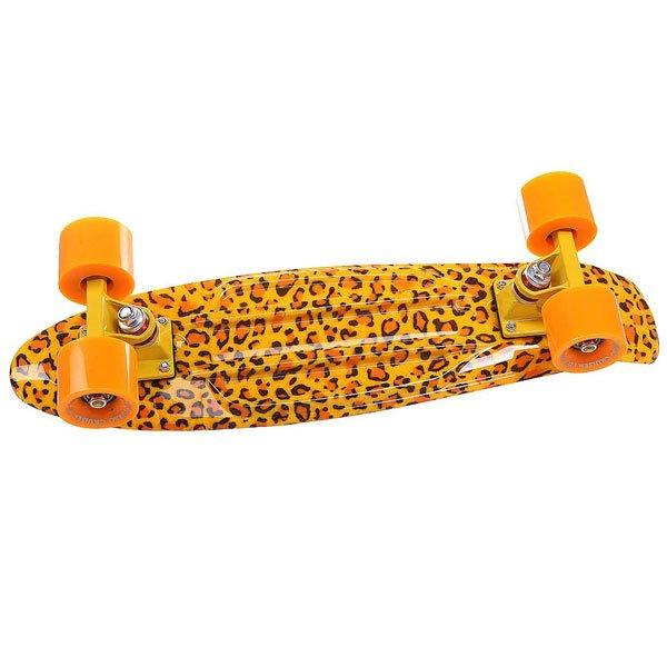 Скейт мини круизер Turbo-FB Leo Yellow/Orange 22 (55.9 см)Пластиковый круизер TURBO-FB - это воплощение стараний ребят из одноименного Российского бренда, которые вот уже более 10 лет выпускают скейтборды и получается это у них, прямо скажем, отлично!  Данная модель круизера обладает целым рядом преимуществ: подшипники ABEC-7 позволят Вам ехать быстрее и дольше с одного толчка ногой, бушинги Thunder сделают управление легким и плавным, а качественная доска прослужит Вам не один сезон! Наслаждайтесь катанием вместе с TURBO-FB!Технические характеристики: Дека Turbo-Fb 56 см x 14.5 см.Подвески Turbo-Fb.Бушинги Thunder.Колеса Turbo-Fb 56 мм 85A.Подшипники Abec-7.Никелированные винты.Изделие не предназначено для трюков и рассчитано на массу до 80кг.<br><br>Цвет: желтый,оранжевый<br>Тип: Скейт мини круизер