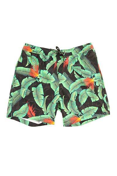 Шорты пляжные Quiksilver Glitched 17 Green GeckoБордшорты с модной абстрактной расцветкой.Характеристики:Прорезной задний карман. Пояс на шнуровке. Боковой прорезной карман. Эластичный пояс на резинке.Вышитый логотип. Прямой крой.<br><br>Цвет: желтый,голубой<br>Тип: Шорты пляжные<br>Возраст: Взрослый<br>Пол: Мужской