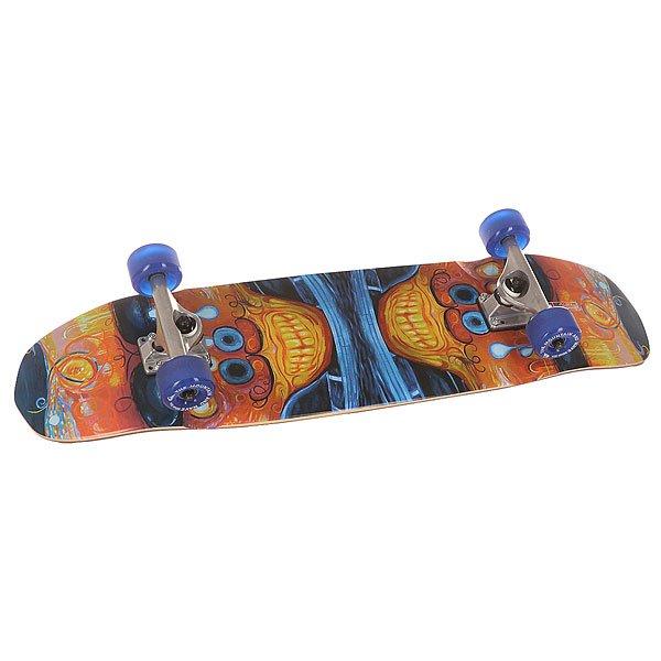 Скейт круизер Quiksilver Shakacruise Multicolour 8.5 x 31.675 (80.5 см)Универсальный гибридный скейт, который подойдет для катания на любой местности.Технические характеристики: Материал - канадский клен.Песчаная шкурка.Подвеска kingpin - 16,5 см.Длина деки - 80,5 см, ширина - 22 см.Колеса 60 мм.<br><br>Цвет: мультиколор<br>Тип: Скейт круизер<br>Возраст: Взрослый<br>Пол: Мужской
