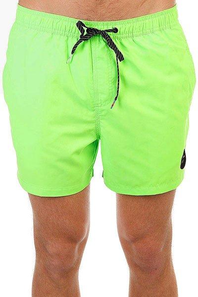 Шорты пляжные Quiksilver Everysolidvol15 Green Gecko<br><br>Цвет: зеленый<br>Тип: Шорты пляжные<br>Возраст: Взрослый<br>Пол: Мужской