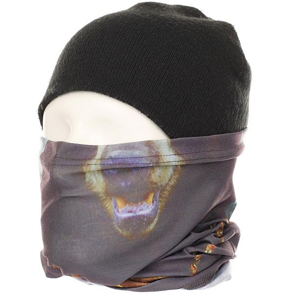 купить Шарф труба Terror Snow Tube Mask Brown недорого