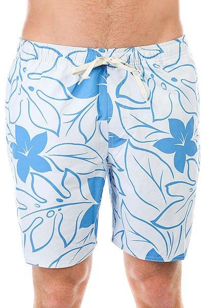 Шорты пляжные Quiksilver Nassauchroma Plein Air<br><br>Цвет: ,серый,синий<br>Тип: Шорты пляжные<br>Возраст: Взрослый<br>Пол: Мужской
