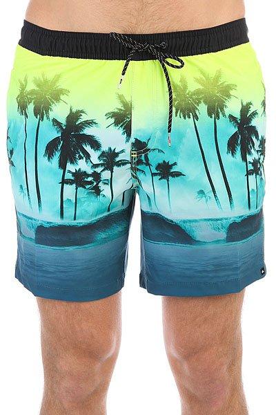 Шорты пляжные Quiksilver Wavesvolley17 Viridian Green<br><br>Цвет: мультиколор<br>Тип: Шорты пляжные<br>Возраст: Взрослый<br>Пол: Мужской