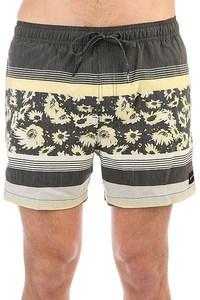 Шорты пляжные Quiksilver Swemmvisvo15 Quiet Shade шорты пляжные детские quiksilver hightechyth16 real teal