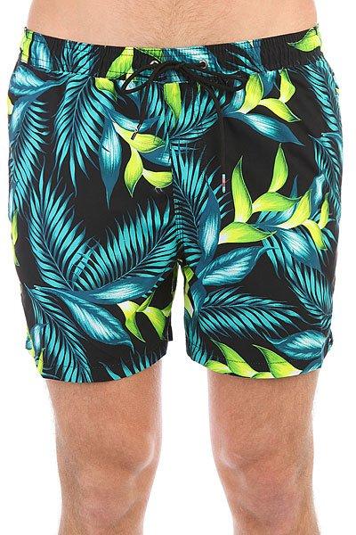 Шорты пляжные Quiksilver Paradisepoint15 Viridian Green<br><br>Цвет: черный,мультиколор<br>Тип: Шорты пляжные<br>Возраст: Взрослый<br>Пол: Мужской