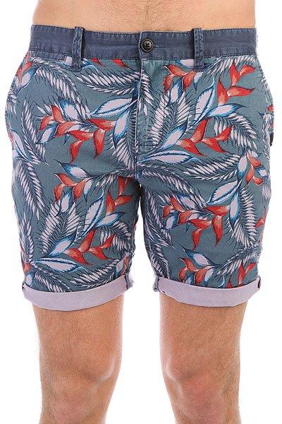 Шорты классические Quiksilver Paradisepointsh Indian Teal шорты пляжные детские quiksilver hightechyth16 real teal