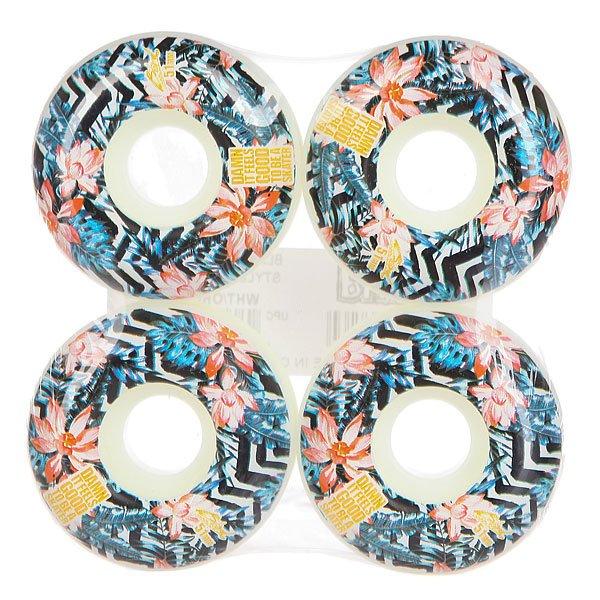 Колеса для скейтборда для скейтборда Blind Damn Plantlife Wheel White/Orange 51 mmДиаметр: 51 mm    Цена указана за комплект из 4-х колес<br><br>Цвет: мультиколор<br>Тип: Колеса для скейтборда<br>Возраст: Взрослый<br>Пол: Мужской