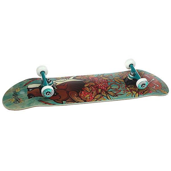 Скейтборд в сборе Nord Лого Волк Brown/Green/Color Trucks 32 x 8.25 (21 см)<br><br>Цвет: коричневый,зеленый<br>Тип: Скейтборд в сборе<br>Возраст: Взрослый<br>Пол: Мужской