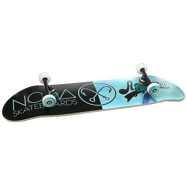 Скейтборд в сборе Nord Норд Х Моно Light Blue/Black 32.5 x 8.5 (21.6 см)<br><br>Цвет: голубой,черный<br>Тип: Скейтборд в сборе<br>Возраст: Взрослый<br>Пол: Мужской