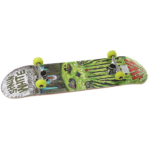 Скейтборд в сборе Shaun White Supply Co Shaun White -3 Griffon Multi 32.5 X 8 (20.3 СМ)