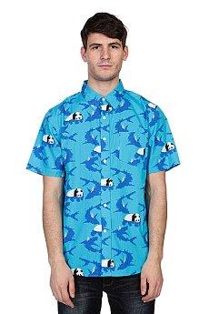 ������� Enjoi Shark Blue