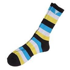 Носки Fallen Trademark Striped Multi Colour