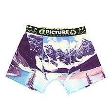 Термобелье (низ) женское Picture Organic Underwear Wipee