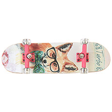 Фингерборд женский Turbo-FB Girls Edition Fox Multi/Pink/Clear