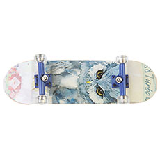Фингерборд женский Turbo-FB Girls Edition Owl Multi/Blue/Clear