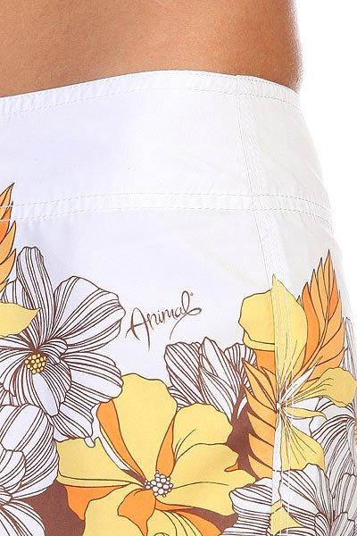 Шорты пляжные женские Animal Fennel White/Brown