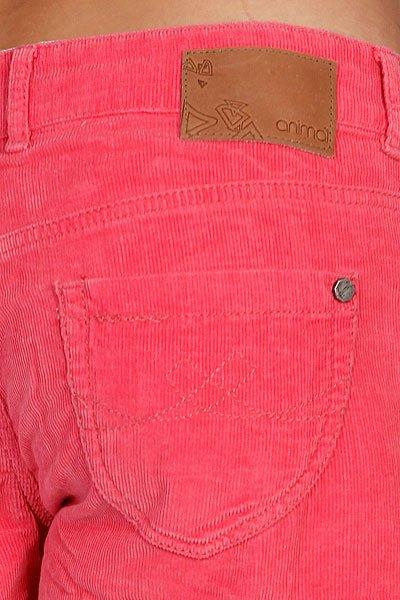 Шорты джинсовые женские Animal Trinitee Pink