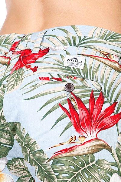Шорты женские Penfield Palm Print Blue