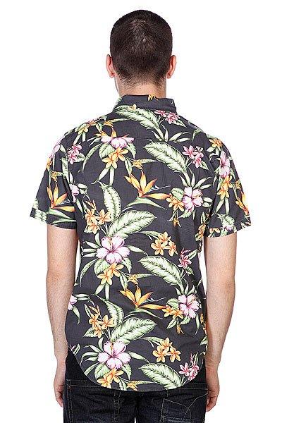 Рубашка Globe Panama Shirt Black