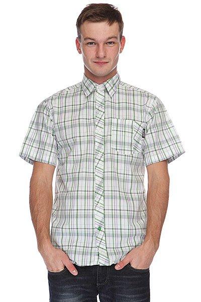 Рубашка в клетку Santa Cruz Hayes Green Check