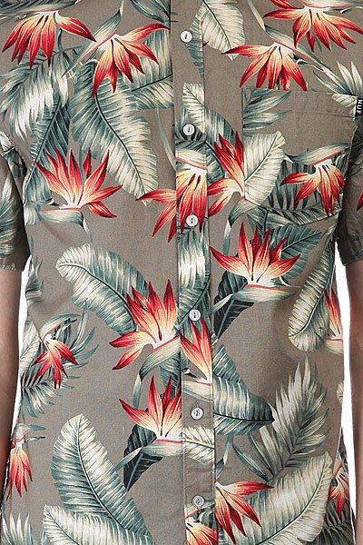 Рубашка Huf Birds Of Paradise S/S Woven Olive