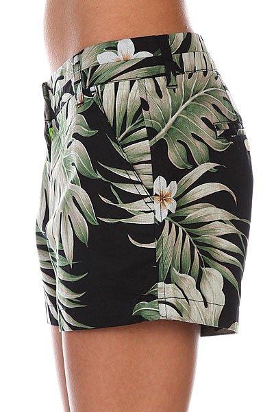 Шорты женские Penfield Truro Short Black Palm