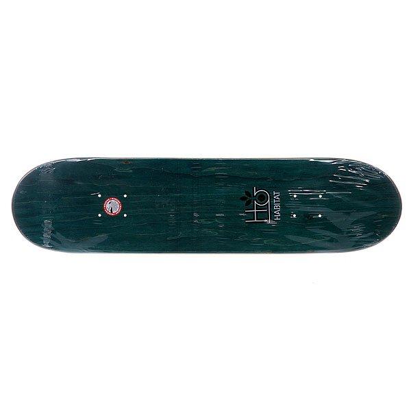 Дека для скейтборда Habitat S5 Suciu Melange 32 x 8.0 (20.3 см)