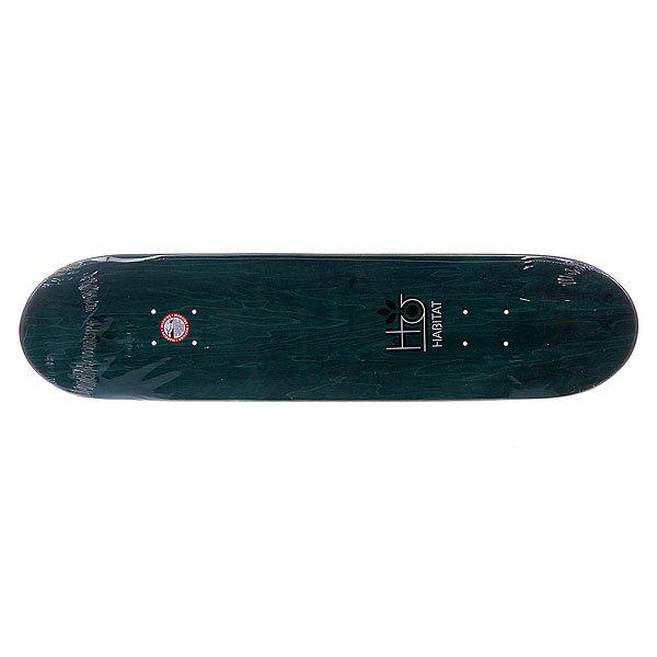 Дека для скейтборда Habitat S5 Silas Melange 32 x 7.75 (19.7 см)