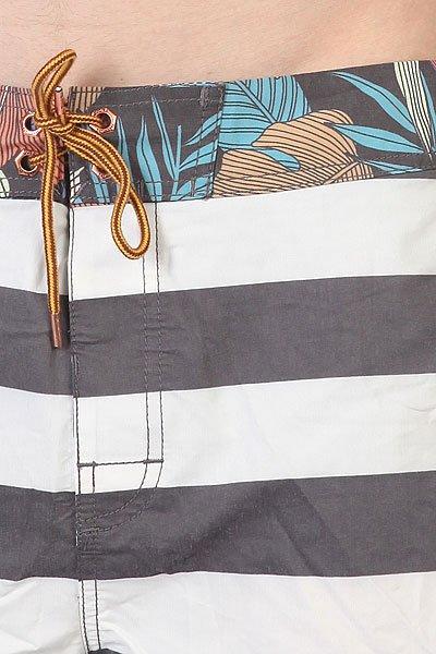 Шорты пляжные Globe Calypso Boardie Vint Black