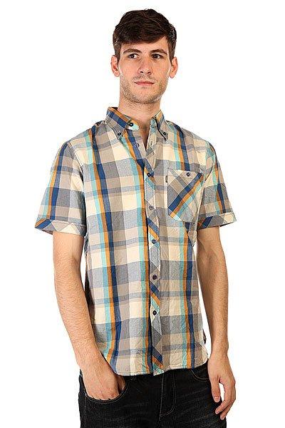 Рубашка в клетку Element Kenington Cobalt Blue
