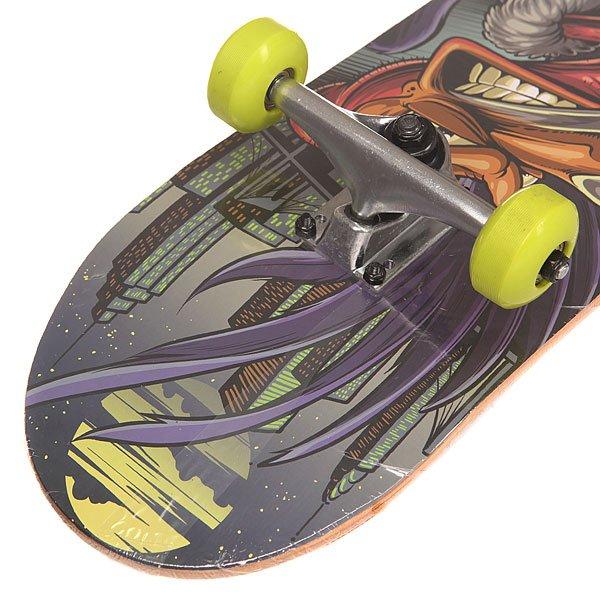 Скейтборд в сборе Shaun White Supply Co. Big Eye Multi 31 x 8 (20.3 см)
