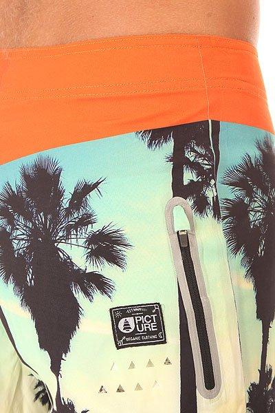 Шорты пляжные Picture Organic Sacramento Dyno