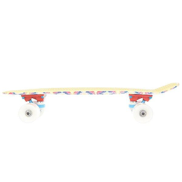 Скейт мини круизер Пластборд Flash Multi 6 x 22.5 (57.2 см)