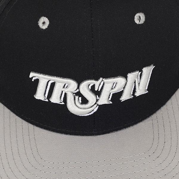 Бейсболка с прямым козырьком TrueSpin Typo Team Grey/Black
