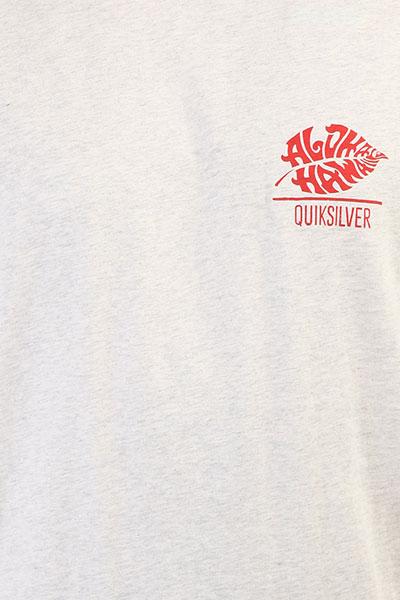 Футболка Quiksilver Htrorigintaro Snow White Heather