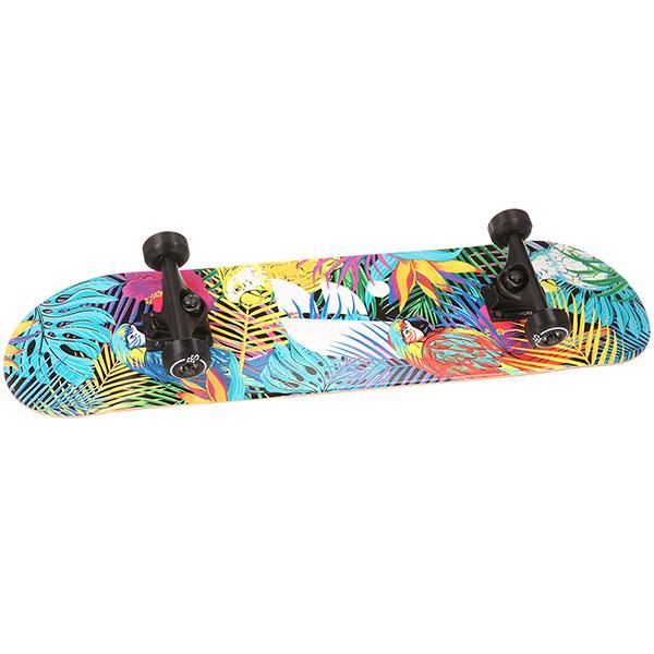 Скейтборд в сборе Footwork 18 Tropical 31.2 x 7.75 (17.8 см)