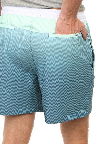 Шорты пляжные Quiksilver Fadervl17 Green Ash