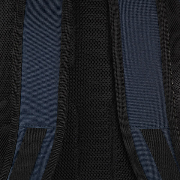 Рюкзак спортивный DC Shoes Chalkers Black Iris