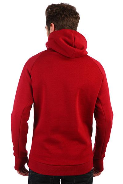 Толстовка сноубордическая Anteater Hoodie-bordo Red