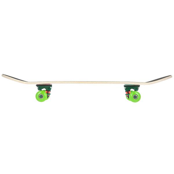 Скейтборд в сборе Turbo-FB Light Multicolor