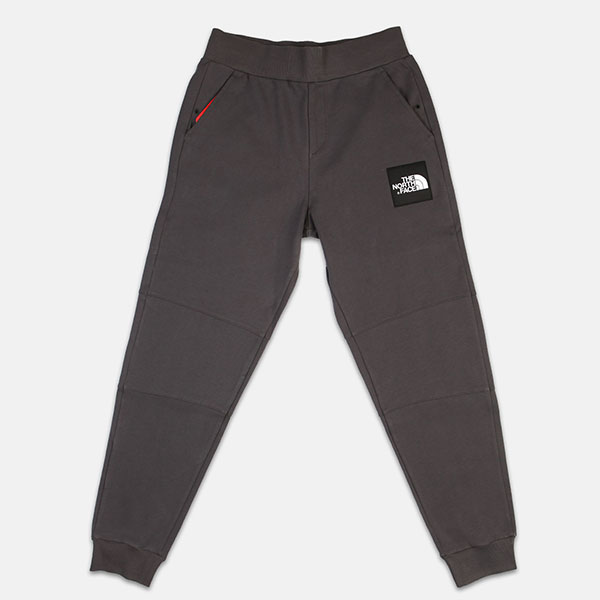 Штаны спортивные The North Face Fine Pant Asphalt Grey